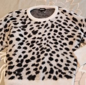 Express dalmatian sweater